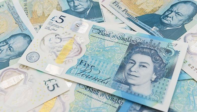 Британские вегетарианцы требуют прекратить выпуск пластиковых банкнот  фото:change.org