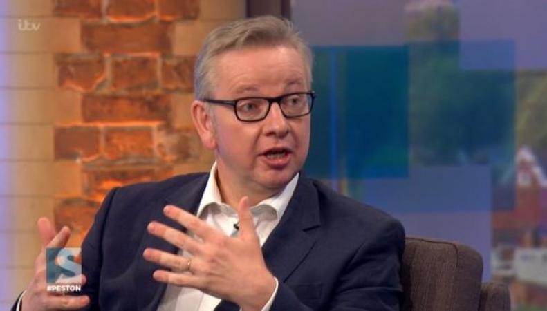 Расставание с Евросоюзом не будет быстрым, - Майкл Гоув фото:mirror.co.uk