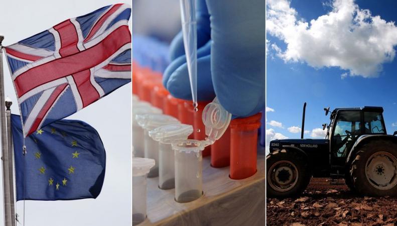 Великобритания сохранит  финансовую поддержку фермерам и ученым после Brexit фото:bbc.com