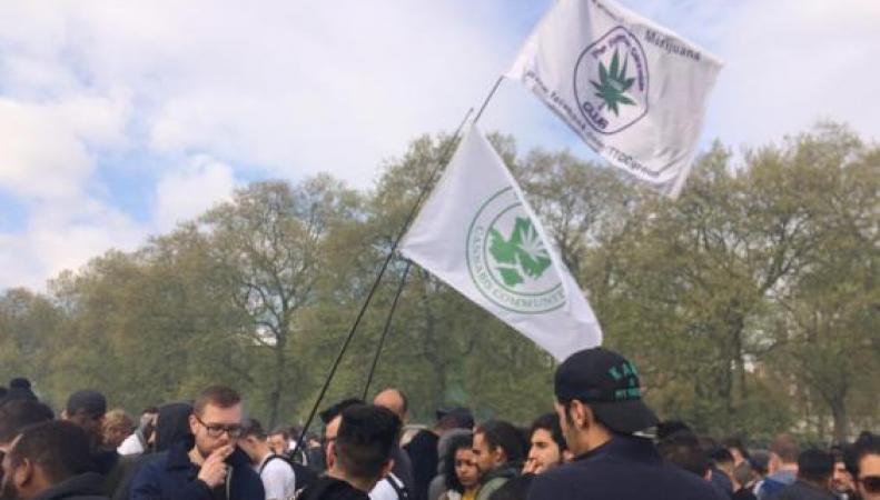Акция сторонников легализации марихуаны в Лондоне закончилась арестами