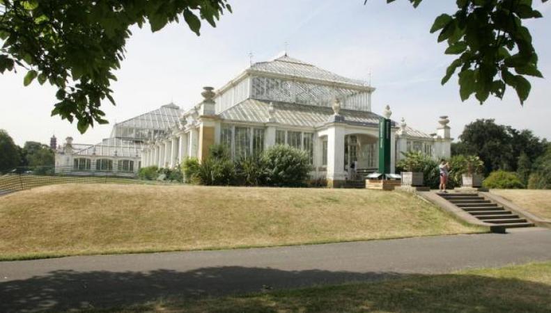 Лондонский парк Kew Gardens популярен как никогда прежде фото:richmondandtwickenhamtimes.co.uk