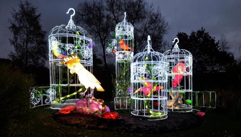Фестиваль китайских фонариков в Лондоне перенесен на Рождество