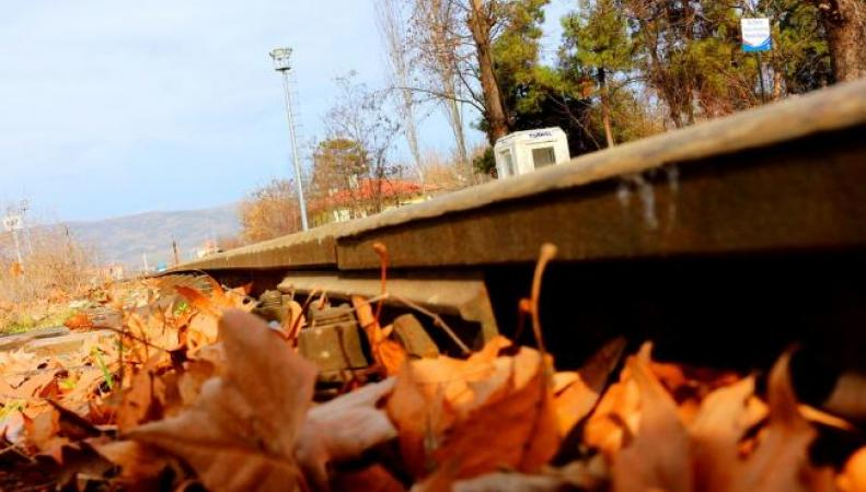 В Лондоне начались отмены поездов из-за листопада фото:dailymail