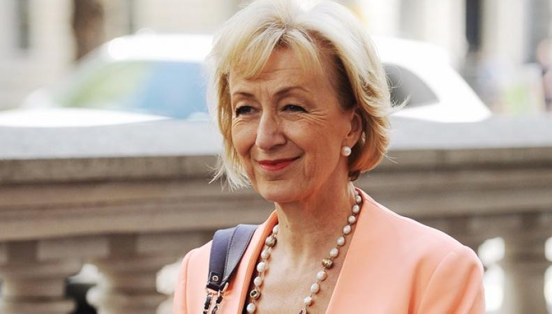 Андреа Лидсом поставила под удар свою карьеру в правительстве Терезы Мэй фото:itv.com