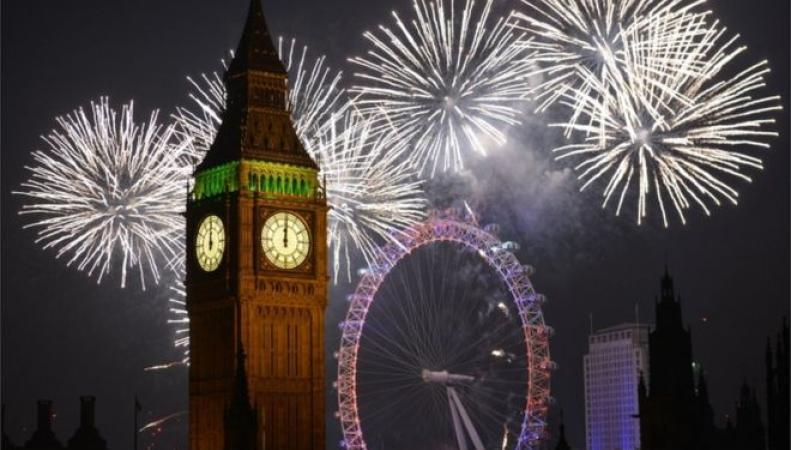 Британские зоозащитники потребовали введения ограничения на запуск фейерверков фото:bbc.com