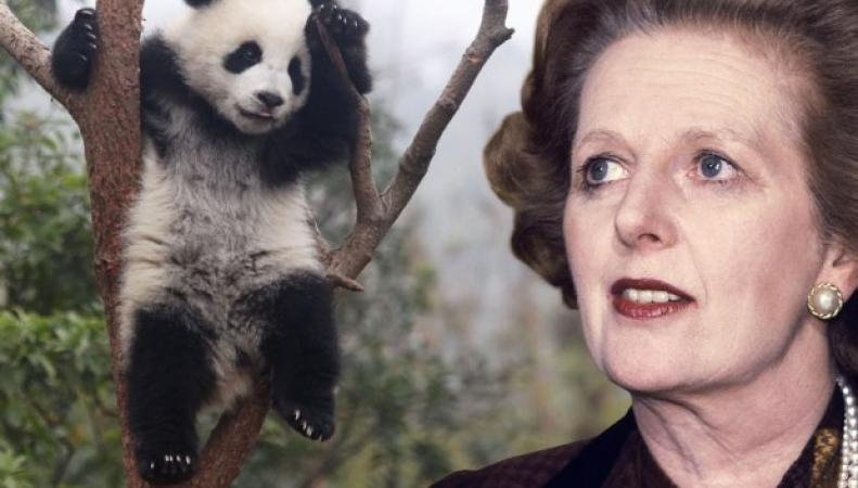 Рассекречено: Маргарет Тэтчер отказалась лететь на одном самолете с пандой