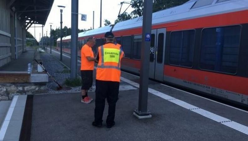 нападение в поезде, поезд в швейцарии