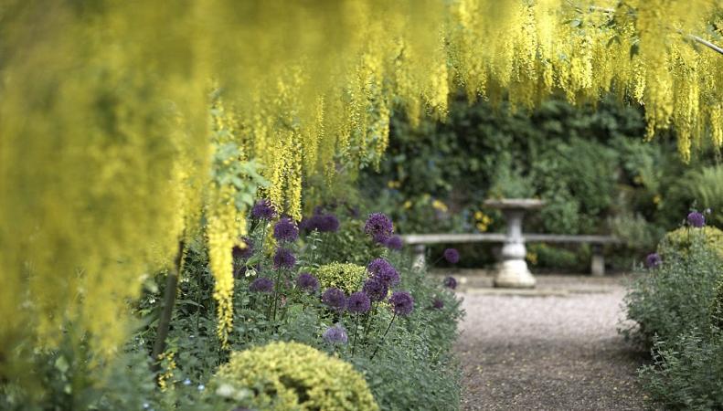 Британские частные парки открылись для посетителей в рамках благотворительной акции фото:dailymail.co.uk