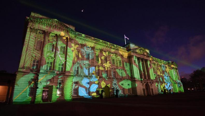 Букингемский дворец позеленел: необычный промоушн экологической инициативы королевы