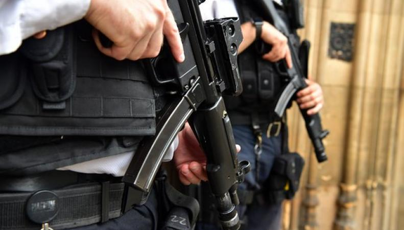 Скотланд-Ярд вывел на улицы Лондона дополнительно шестьсот вооруженных офицеров фото:theguardian.com