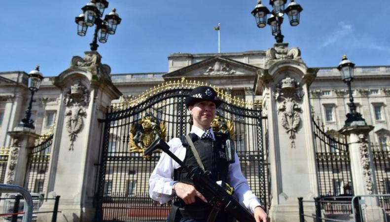 Женщина арестована у ограды Букингемского дворца фото:standard.co.uk