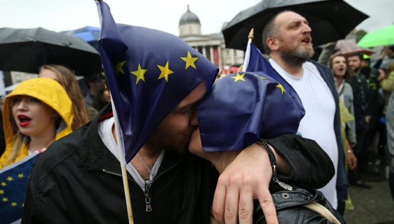 В Лондоне прошел отменный организаторами проевропейский митинг фото:theguardian