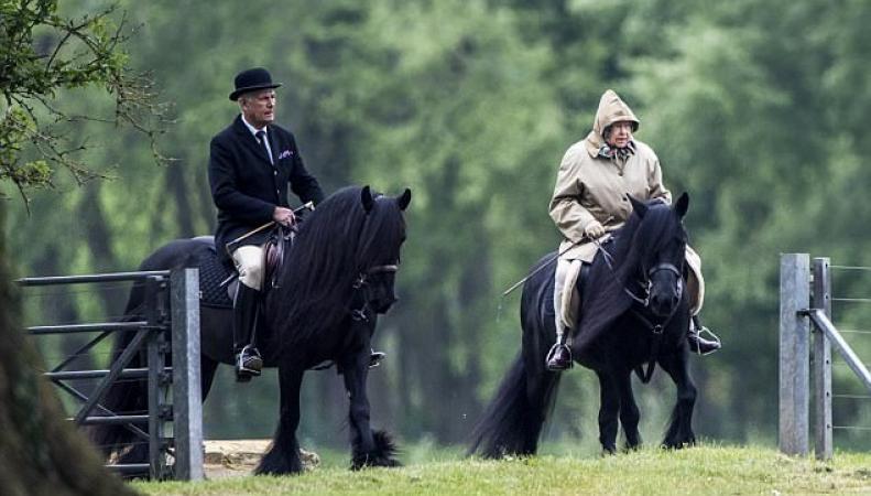 Королева Елизавета II отправилась на конную прогулку в Виндзорском парке фото:dailymail.co.uk