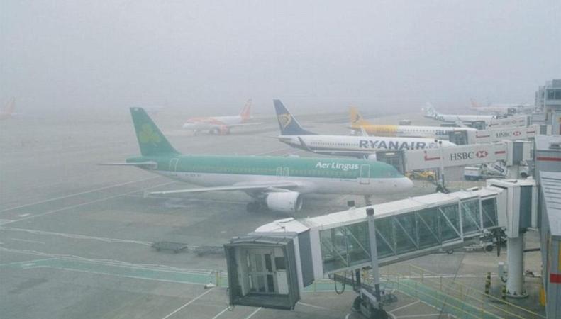 Сильный туман спровоцировал отмену и задержку поездов и самолетов на юге Англии фото:dailymail.co.uk