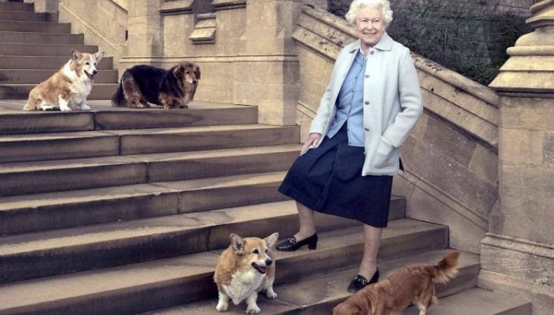 Королева тяжело переживает смерть своего последнего корги