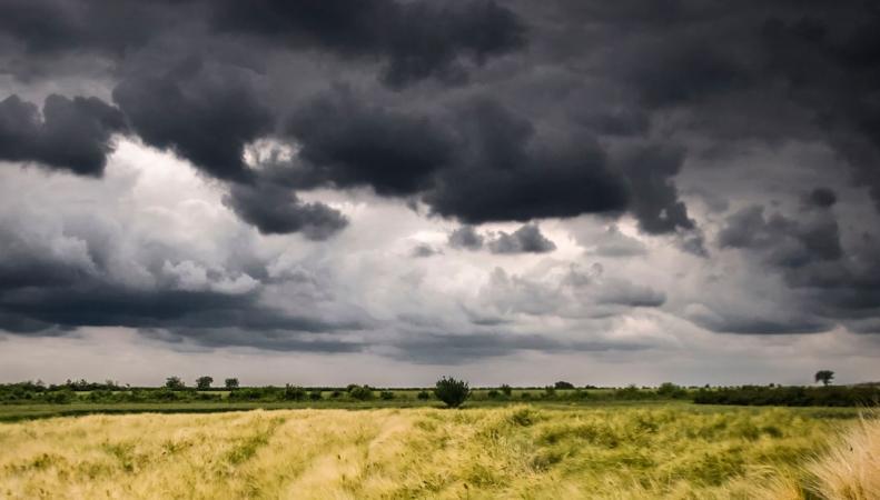 Британское метеобюро предупредило о первых грозах после недели жары
