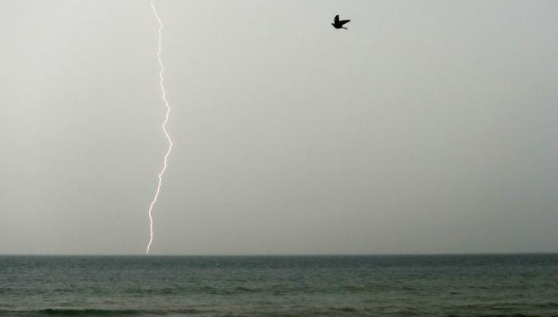 Над Англией сгущаются тучи: объявлено штормовое предупреждение на четверг и пятницу фото:mirror.co.uk