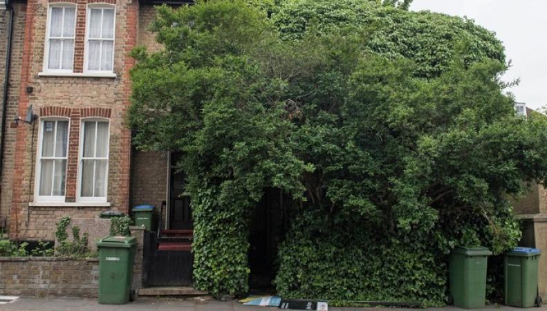 Заброшенный дом в Блэкхите выставлен на аукцион за полмиллиона фунтов стерлингов фото:itv