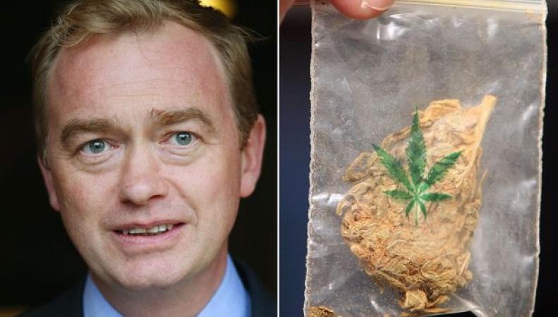 Либерал-демократы в случае победы на выборах легализуют марихуану фото:mirror