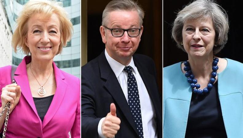 Первый раунд внутрипартийных выборов тори: минус два кандидата фото:theguardian.com