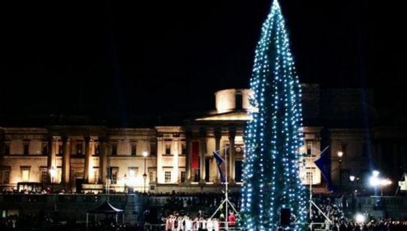 Рождественская елка на Трафальгарской площади