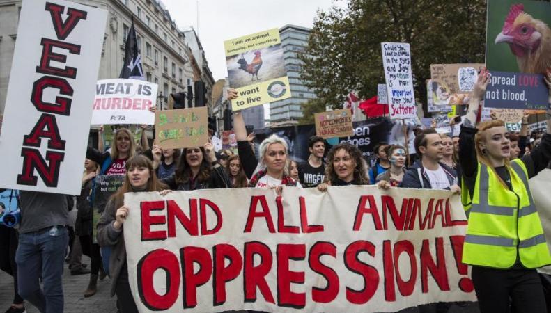 Веганы пройдут маршем протеста по центру Лондона фото:standard.co.uk