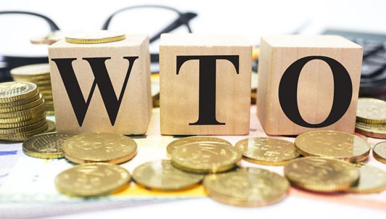 В России допустили выход из ВТО