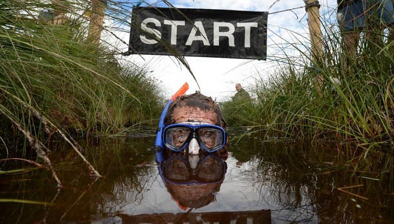 Заплыв в болоте