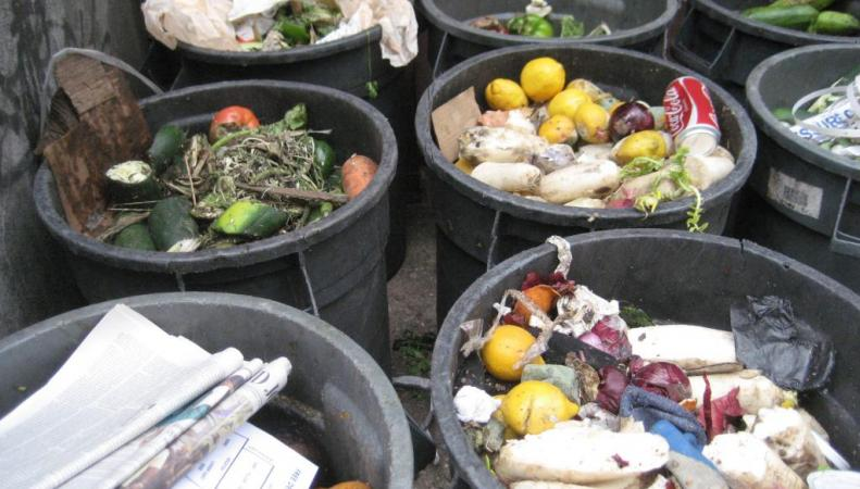 15 млн тонн продуктов выбрасывают в Великобритании