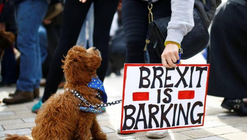 Собачий марш
