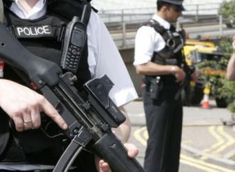 Британская полиция обнаружила тысячи растений конопли общей стоимостью 1 миллион фунтов
