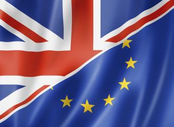 Граждане Великобритании инициировали проведение повторного референдума фото:ibtimes.co.uk