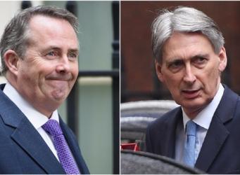 Хэммонд и Фокс исключили сохранение членства Британии в Таможенном союзе фото:itv
